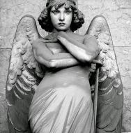 monteverde's angel